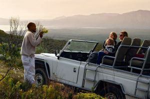 pic1566experienced-guides-lead-grootbos-flower-safari-LR