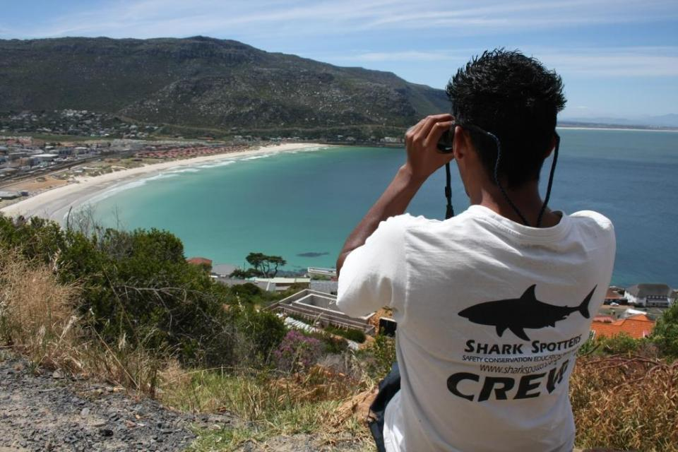 Fish Hoek (c) Shark Spotters