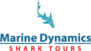 marine dynamics, african responsible tourism awards