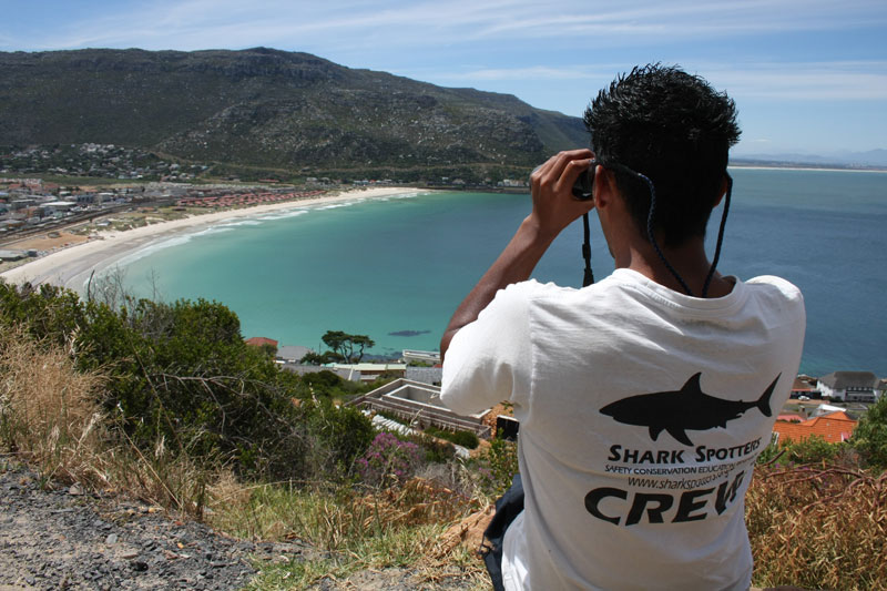 sharkspotters, african responsible tourism awards, beach